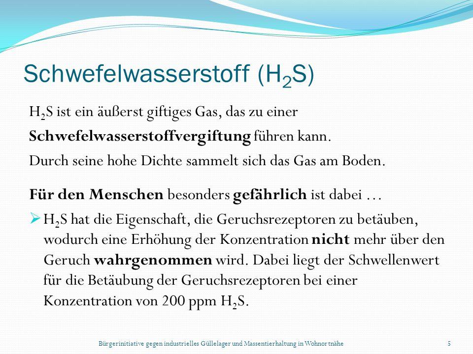 Schwefelwasserstoff (H2S)