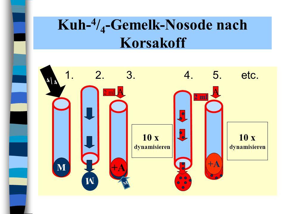 Kuh-4/4-Gemelk-Nosode nach Korsakoff