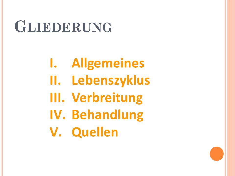 Gliederung Allgemeines Lebenszyklus Verbreitung Behandlung Quellen