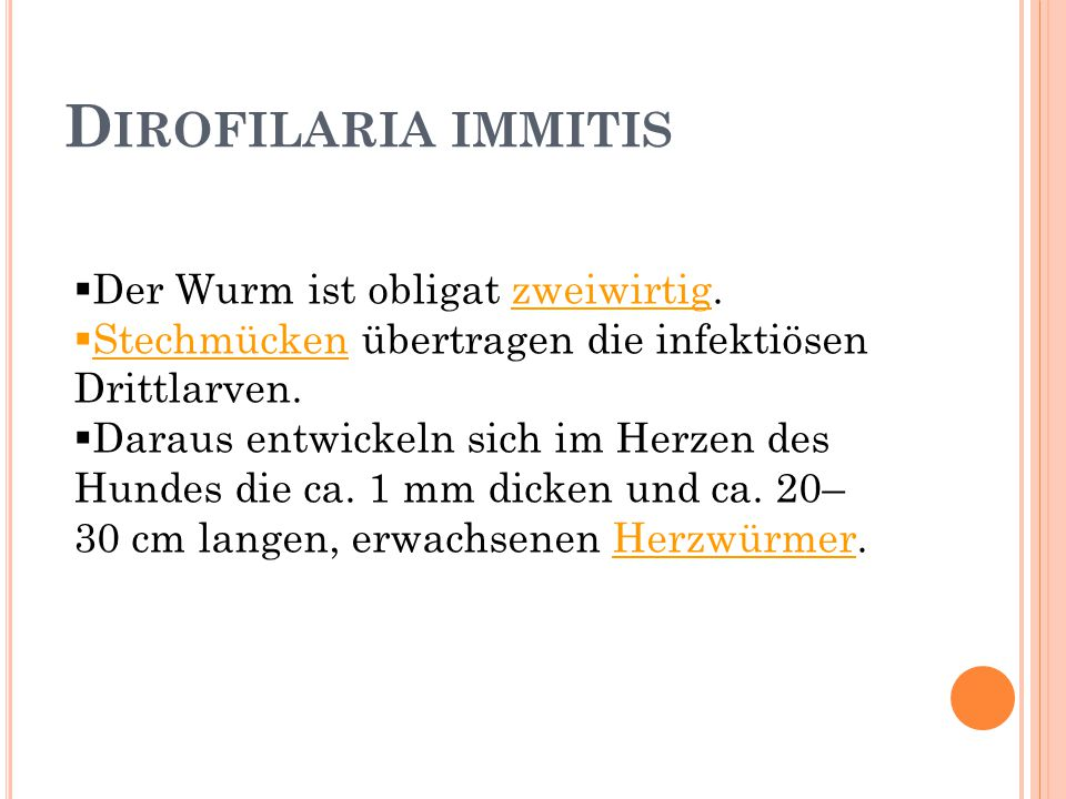 Dirofilaria immitis Der Wurm ist obligat zweiwirtig.