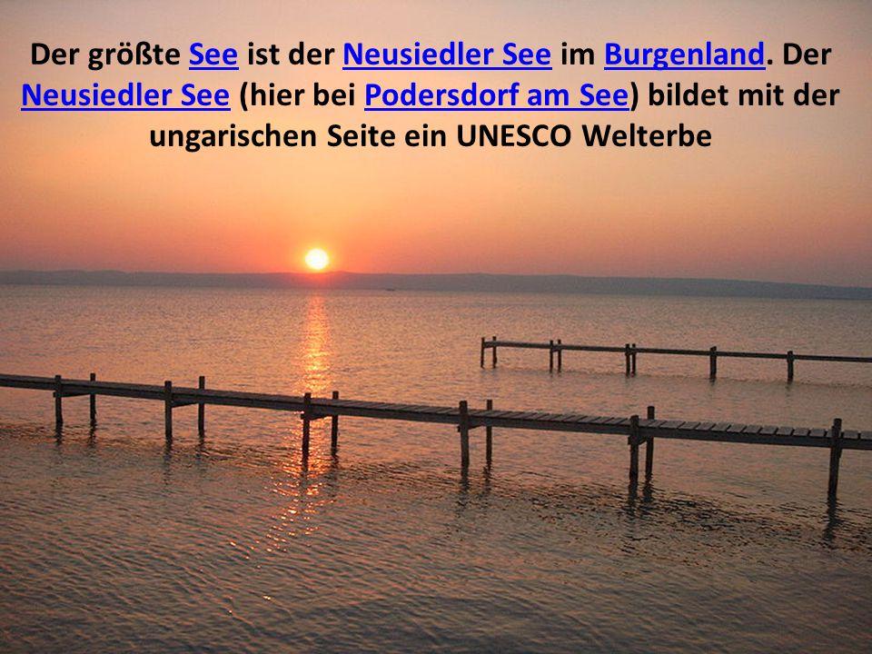 Der größte See ist der Neusiedler See im Burgenland