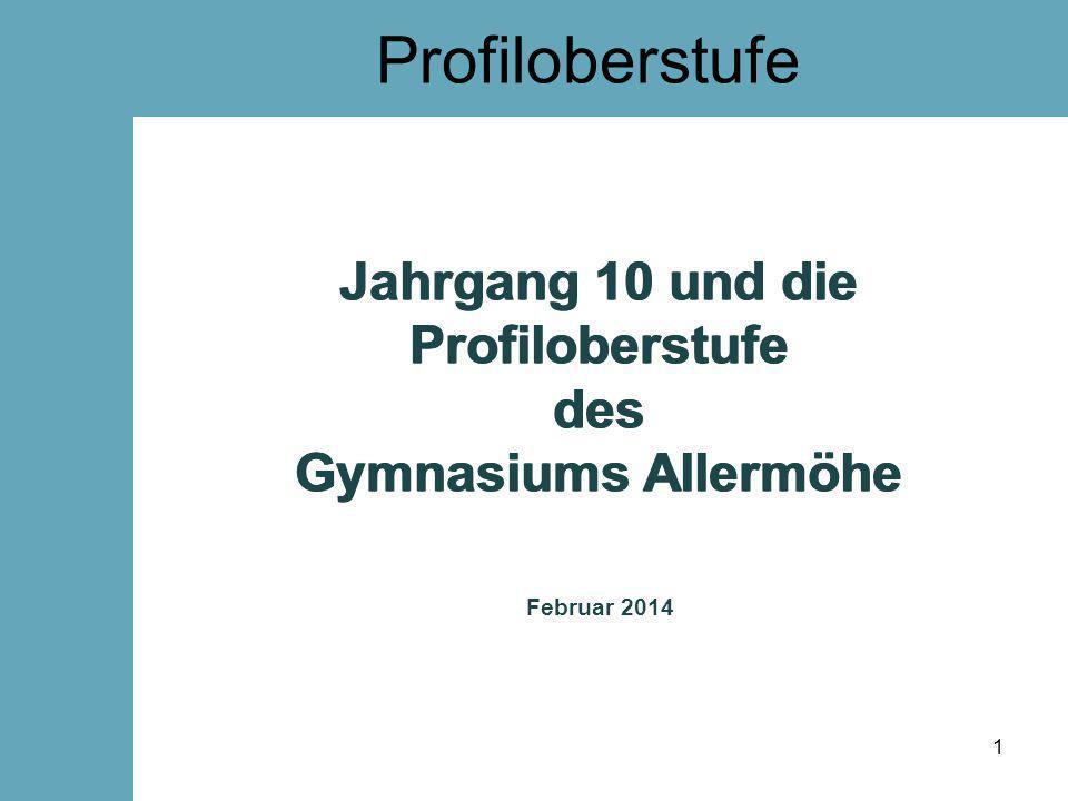 Profiloberstufe Jahrgang 10 und die Profiloberstufe des Gymnasiums Allermöhe. Jahrgang 10 und die Profiloberstufe des Gymnasiums Allermöhe.
