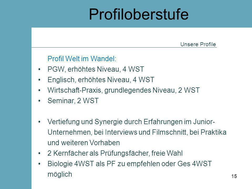 Profiloberstufe Profil Welt im Wandel: PGW, erhöhtes Niveau, 4 WST