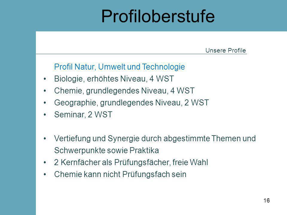 Profiloberstufe Profil Natur, Umwelt und Technologie