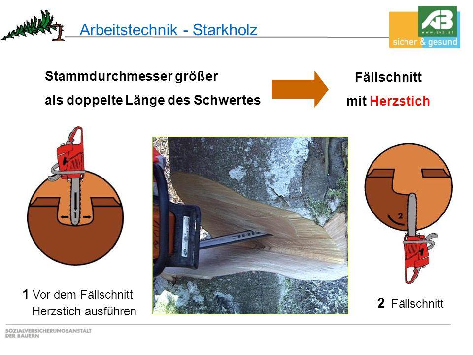 Arbeitstechnik - Starkholz