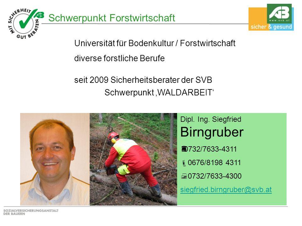 Schwerpunkt Forstwirtschaft