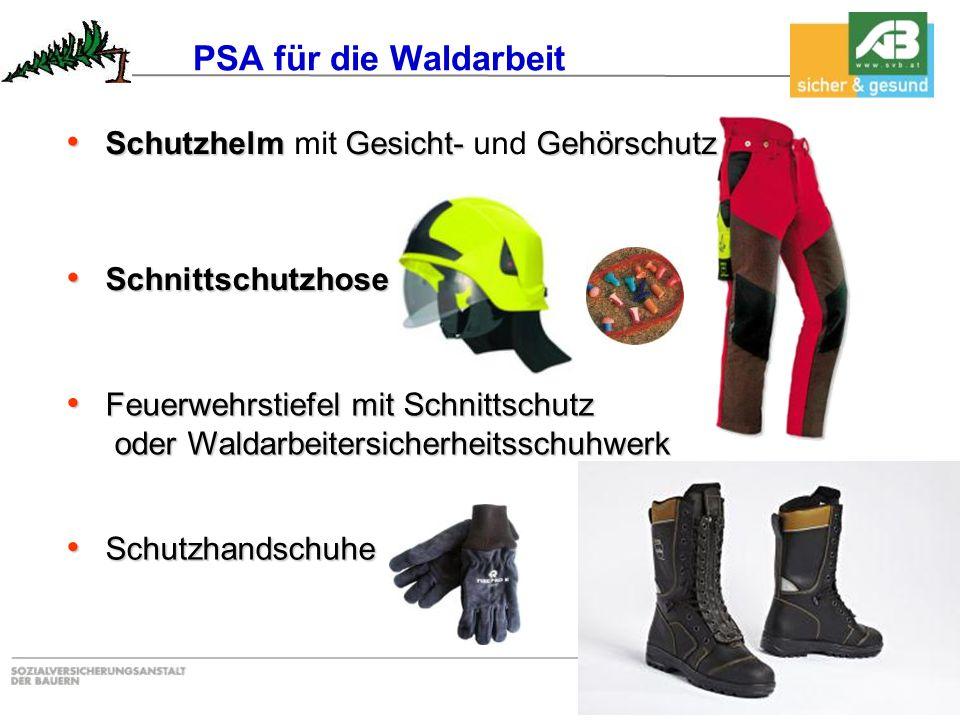PSA für die Waldarbeit Schutzhelm mit Gesicht- und Gehörschutz