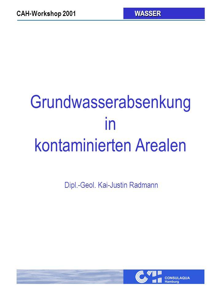 Grundwasserabsenkung in kontaminierten Arealen