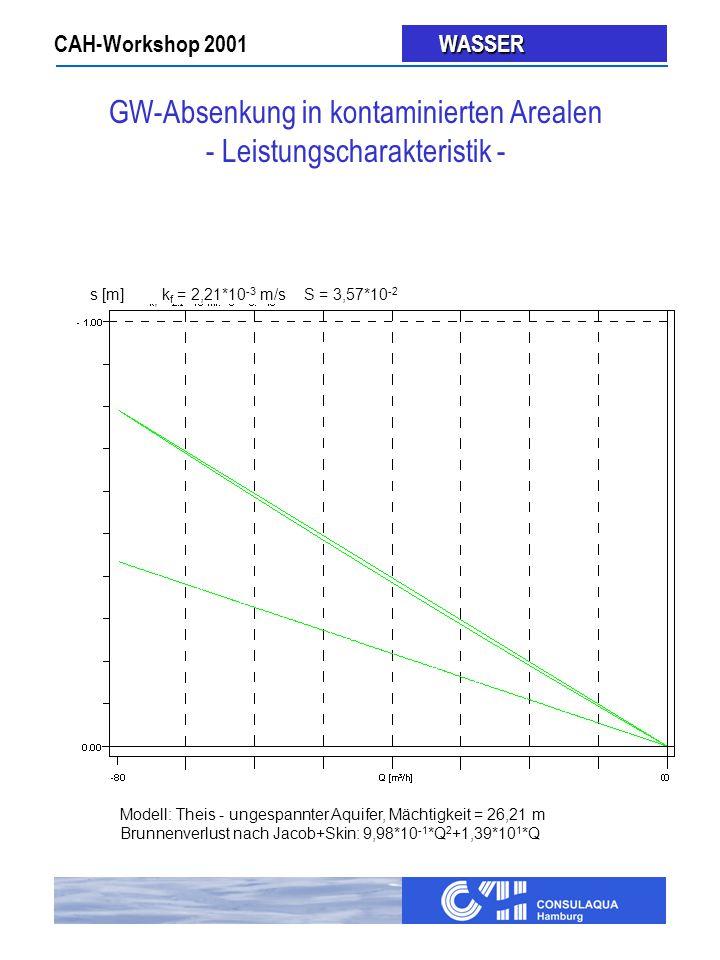 GW-Absenkung in kontaminierten Arealen - Leistungscharakteristik -