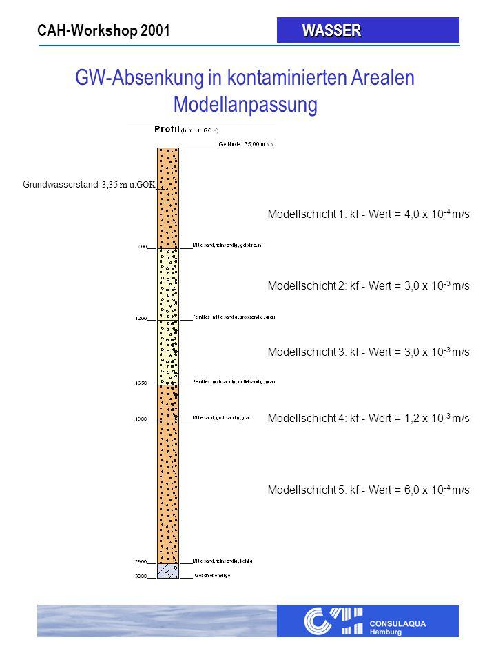 GW-Absenkung in kontaminierten Arealen Modellanpassung