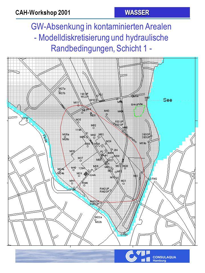 GW-Absenkung in kontaminierten Arealen - Modelldiskretisierung und hydraulische Randbedingungen, Schicht 1 -