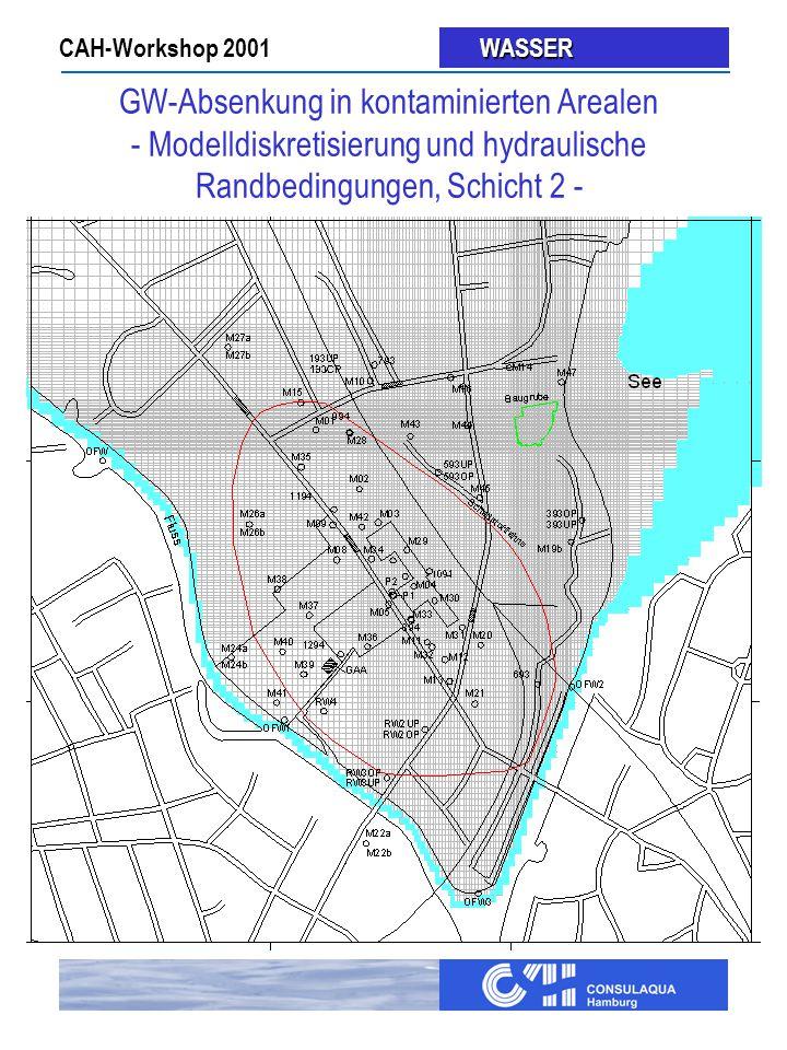 GW-Absenkung in kontaminierten Arealen - Modelldiskretisierung und hydraulische Randbedingungen, Schicht 2 -