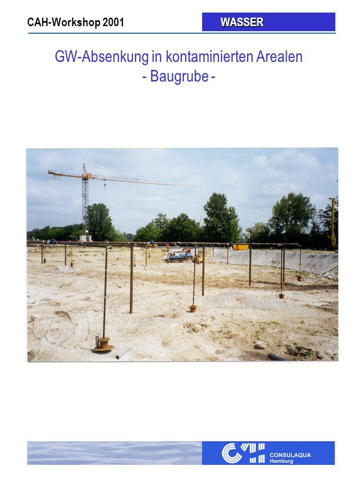 GW-Absenkung in kontaminierten Arealen - Baugrube -