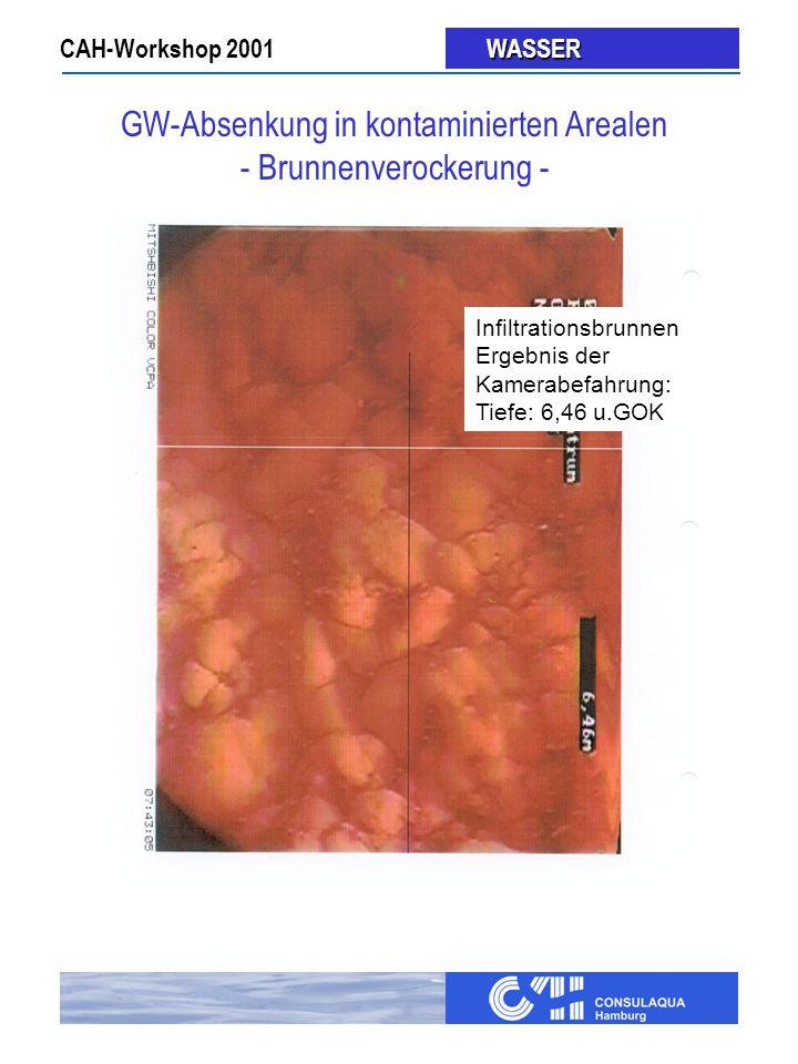 GW-Absenkung in kontaminierten Arealen - Brunnenverockerung -
