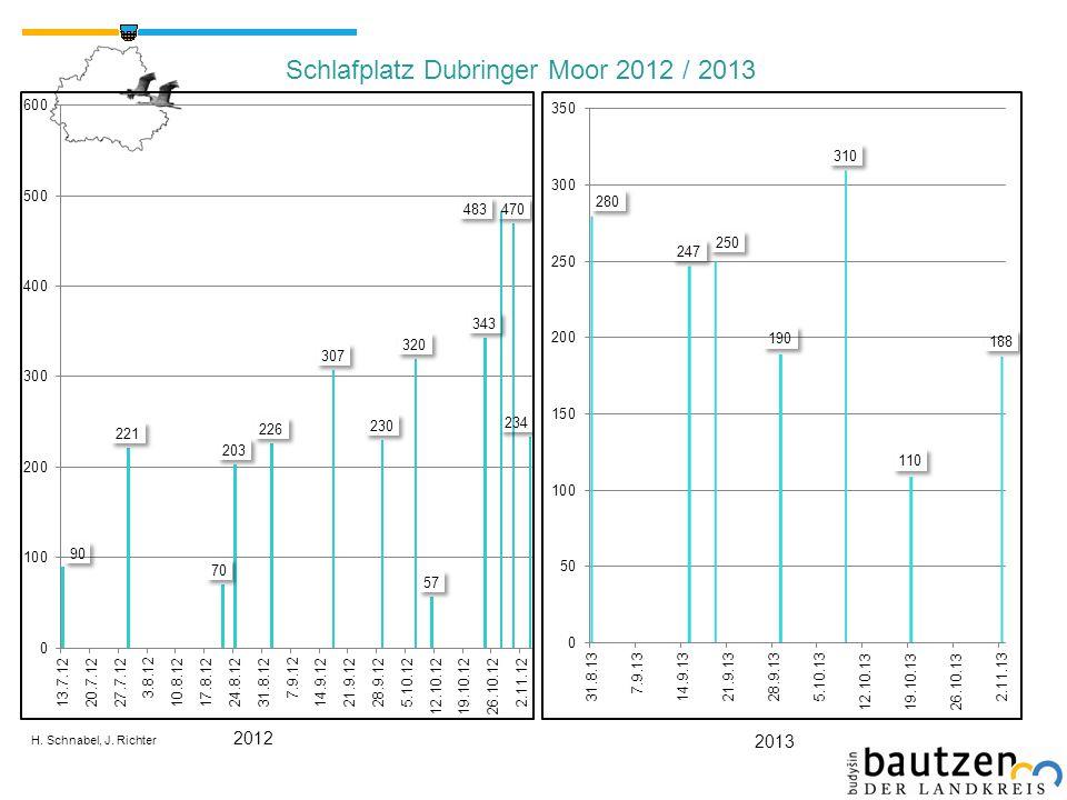 Schlafplatz Dubringer Moor 2012 / 2013