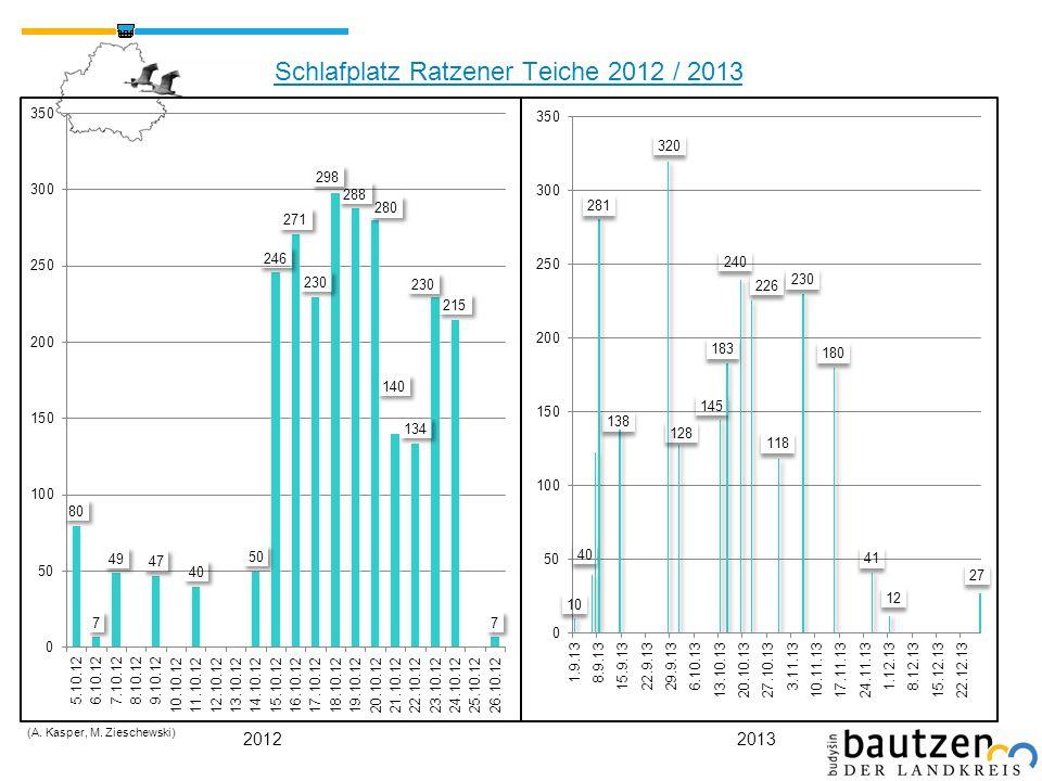 Schlafplatz Ratzener Teiche 2012 / 2013