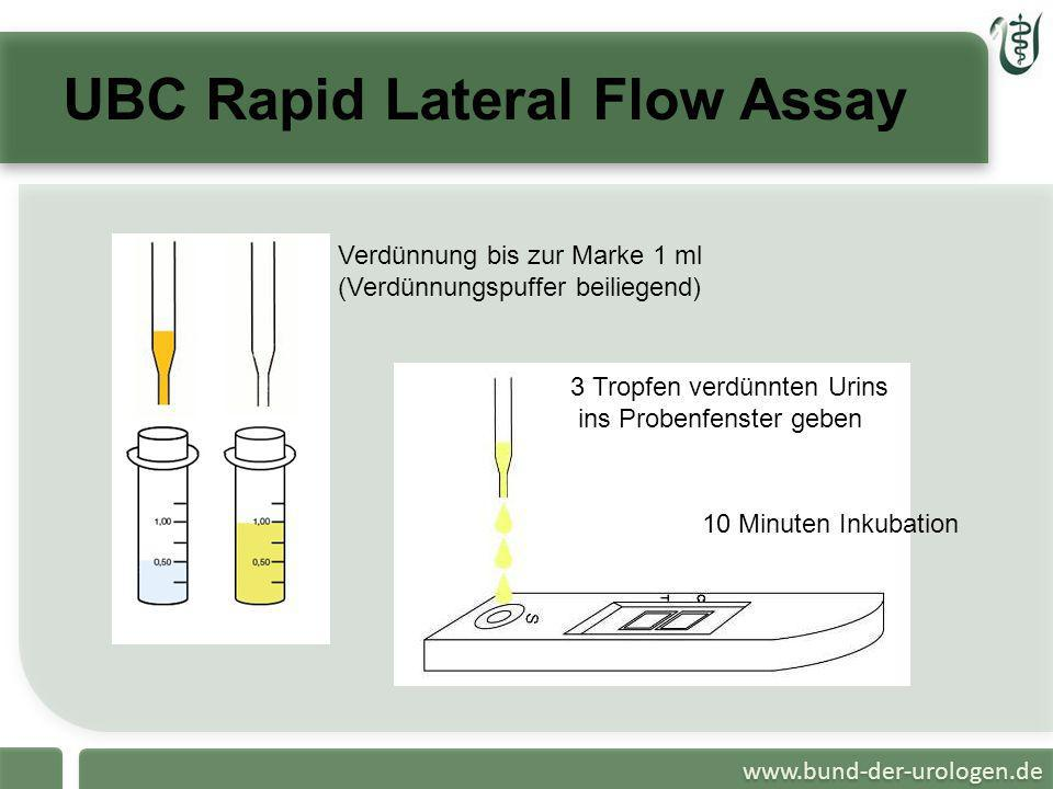 UBC Rapid Lateral Flow Assay