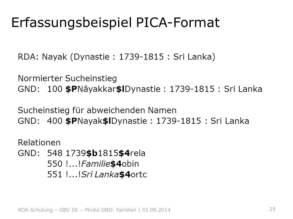 Erfassungsbeispiel PICA-Format