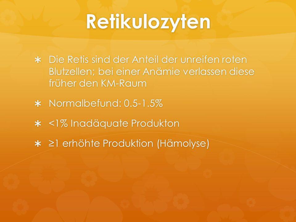 Retikulozyten Die Retis sind der Anteil der unreifen roten Blutzellen; bei einer Anämie verlassen diese früher den KM-Raum.