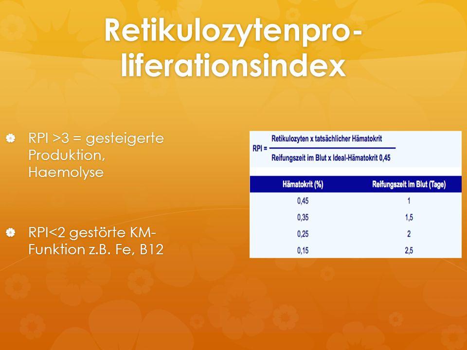 Retikulozytenpro-liferationsindex
