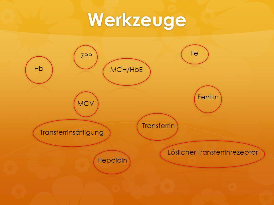 Werkzeuge Fe ZPP Hb MCH/HbE Ferritin MCV Transferrin