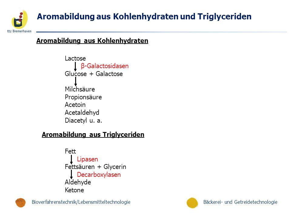 Aromabildung aus Kohlenhydraten und Triglyceriden