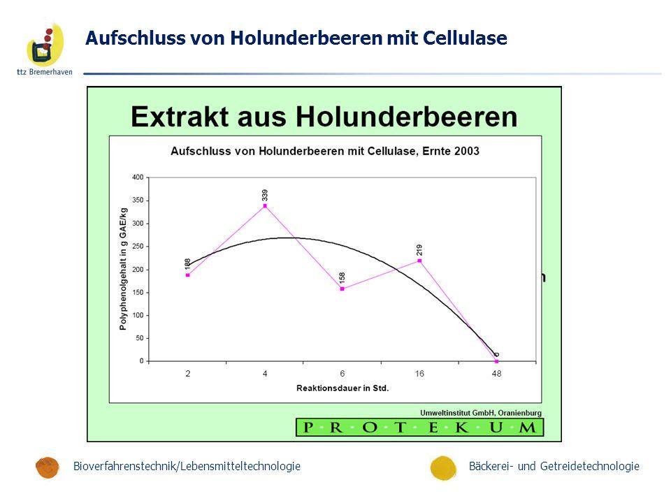 Aufschluss von Holunderbeeren mit Cellulase