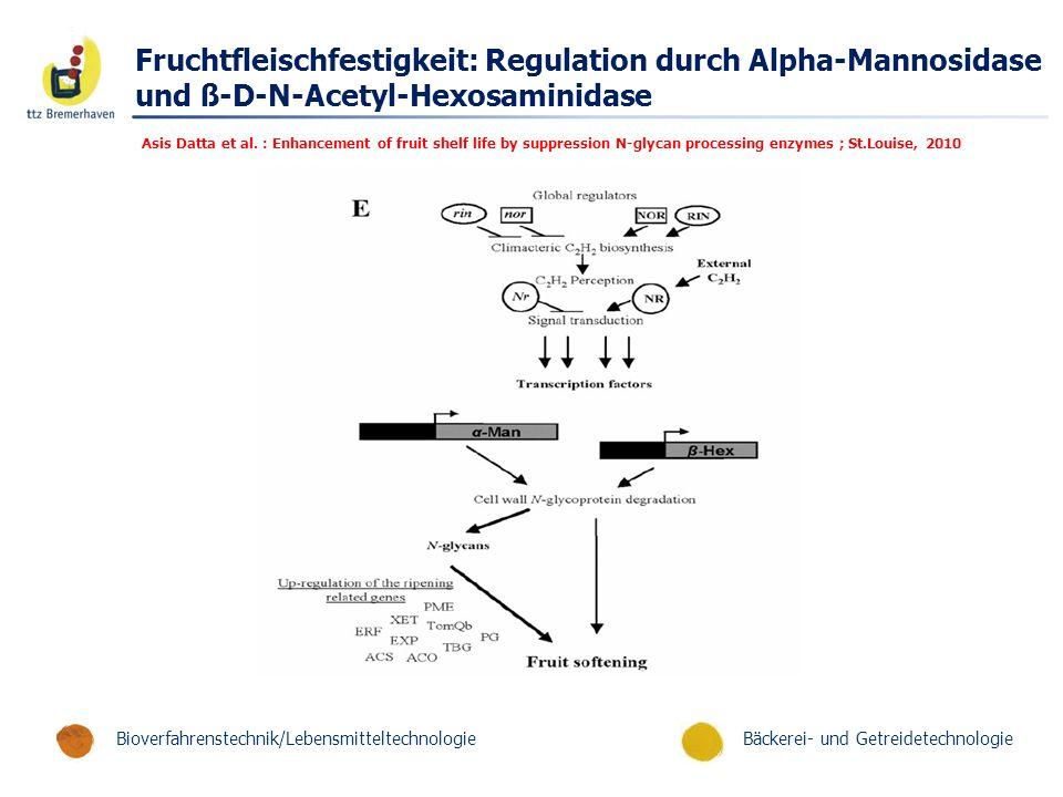 Fruchtfleischfestigkeit: Regulation durch Alpha-Mannosidase und ß-D-N-Acetyl-Hexosaminidase