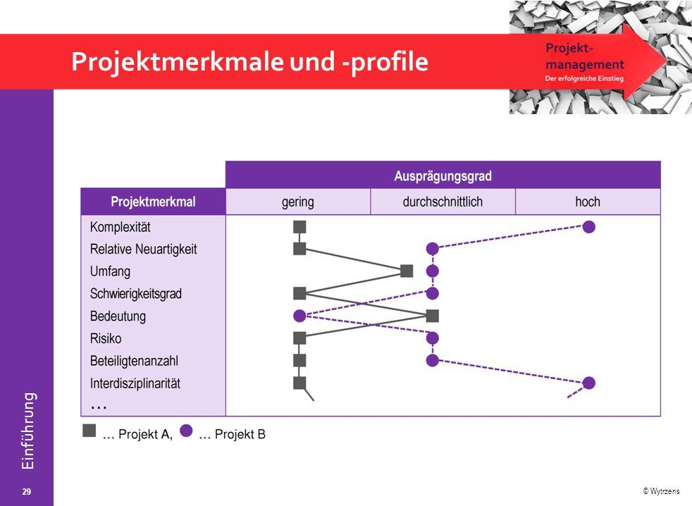 Projektmerkmale und -profile