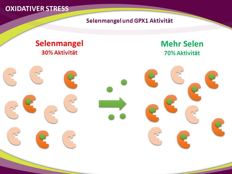 Selenmangel und GPX1 Aktivität