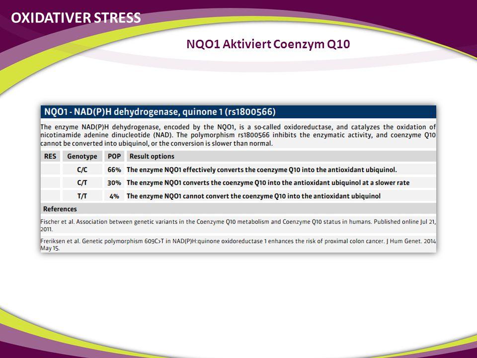 NQO1 Aktiviert Coenzym Q10