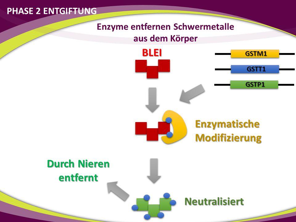 Enzyme entfernen Schwermetalle