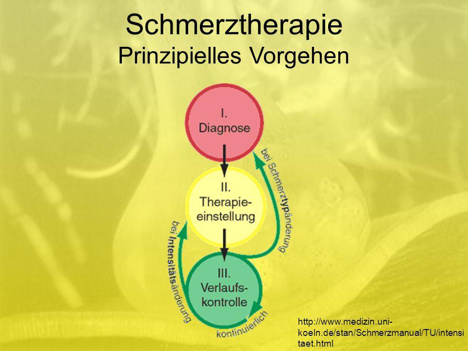 Schmerztherapie Prinzipielles Vorgehen