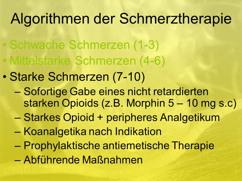 Algorithmen der Schmerztherapie