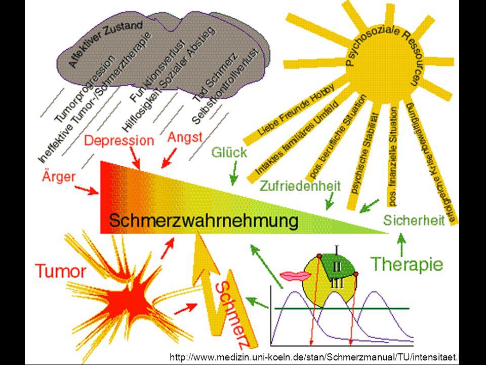 http://www. medizin. uni-koeln. de/stan/Schmerzmanual/TU/intensitaet