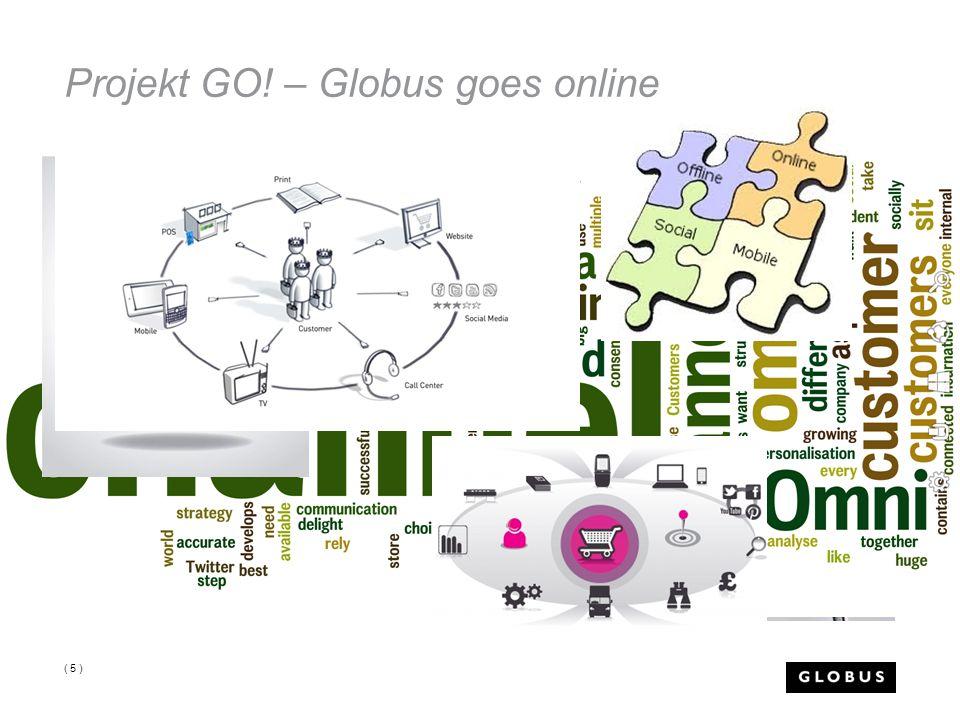 Projekt GO! – Globus goes online