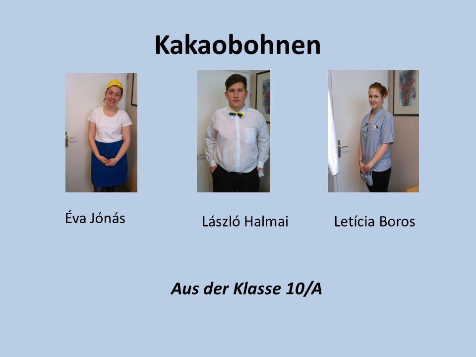 Kakaobohnen Éva Jónás László Halmai Letícia Boros Aus der Klasse 10/A