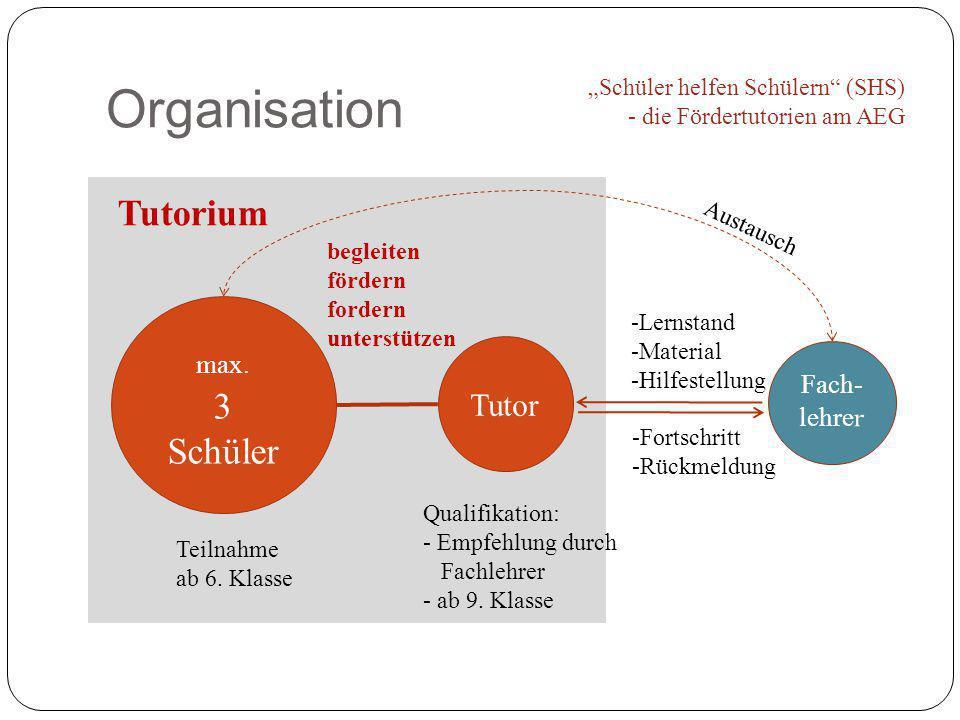 Organisation Tutorium 3 Schüler Tutor max. Fach-lehrer