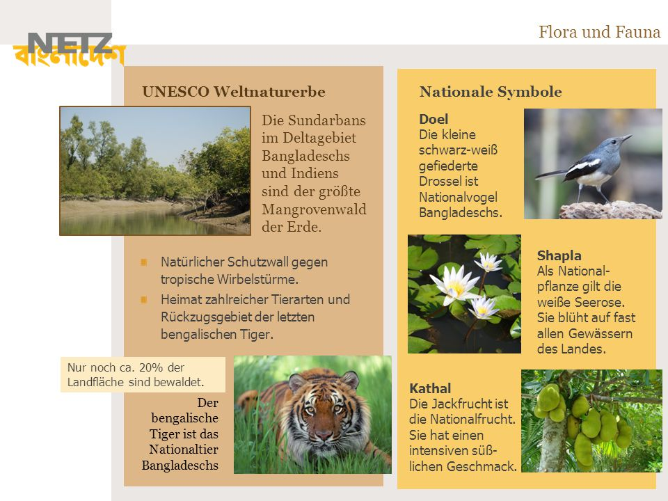 Flora und Fauna UNESCO Weltnaturerbe Nationale Symbole