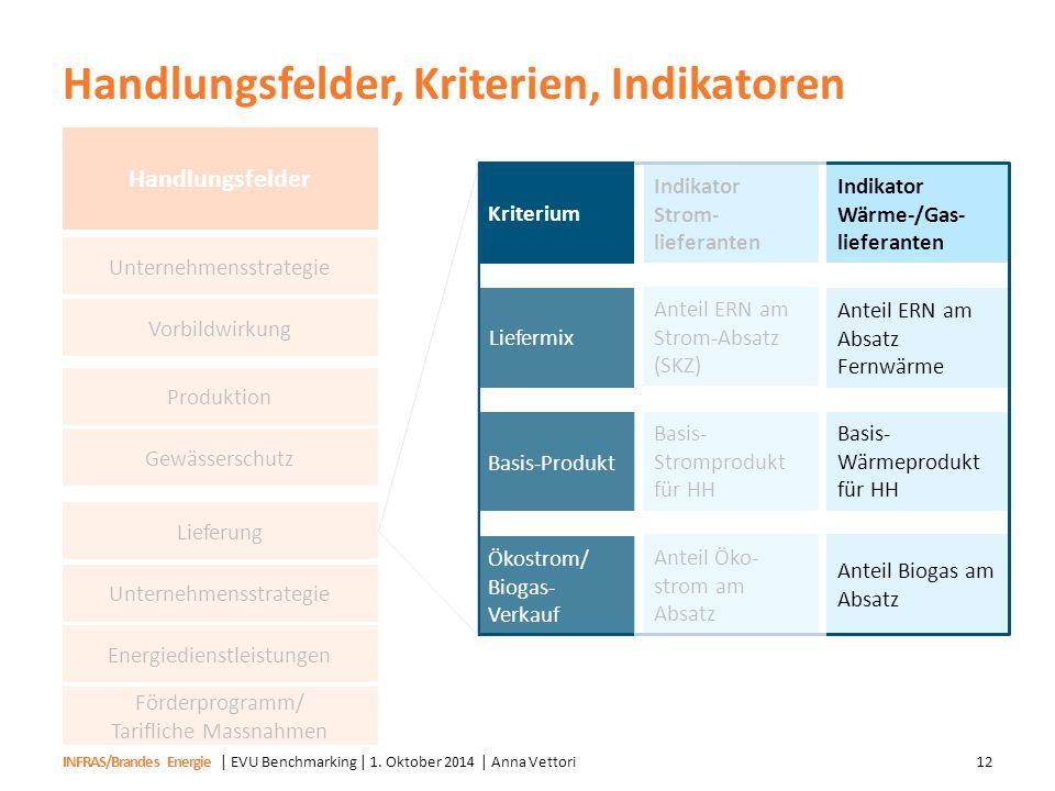 Handlungsfelder, Kriterien, Indikatoren