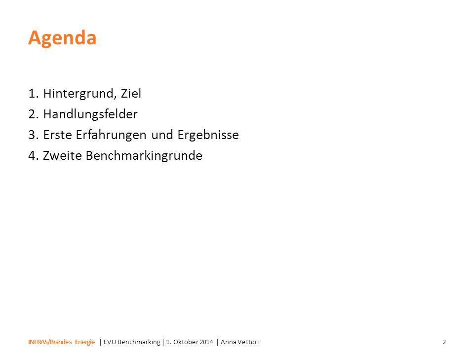 Agenda Hintergrund, Ziel Handlungsfelder