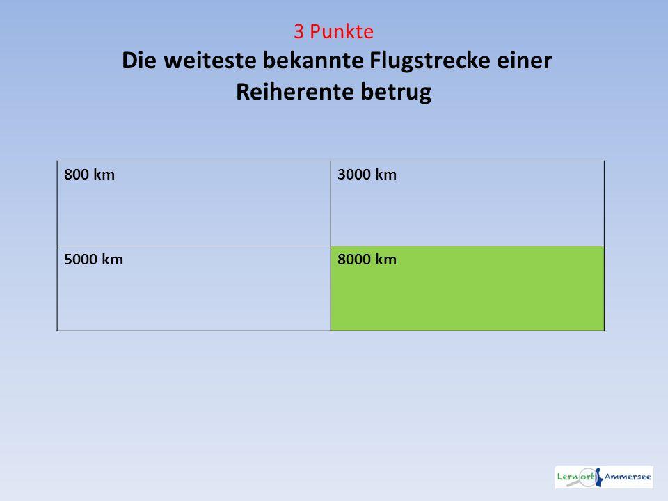 3 Punkte Die weiteste bekannte Flugstrecke einer Reiherente betrug