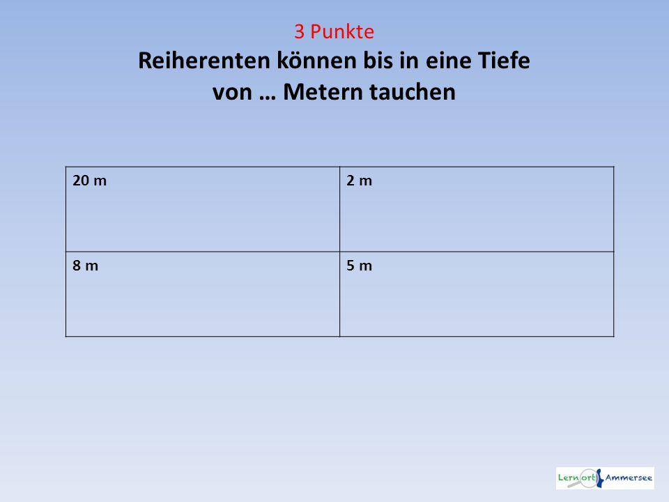 3 Punkte Reiherenten können bis in eine Tiefe von … Metern tauchen