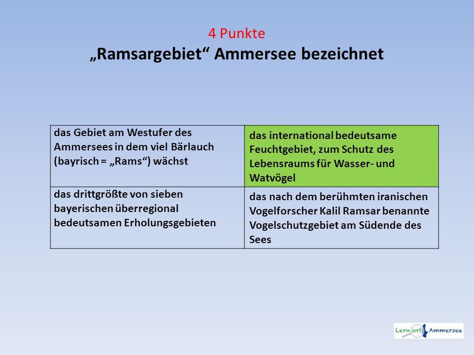 """4 Punkte """"Ramsargebiet Ammersee bezeichnet"""