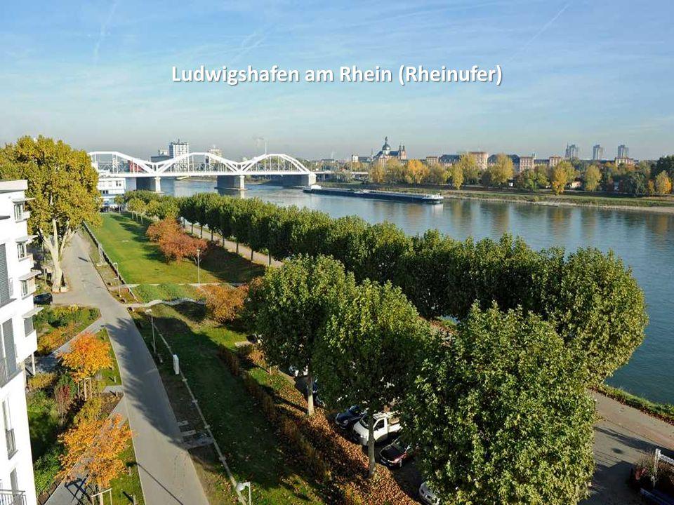 Ludwigshafen am Rhein (Rheinufer)