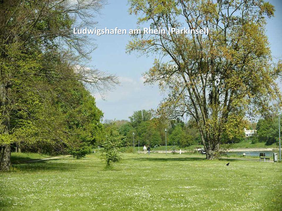 Ludwigshafen am Rhein (Parkinsel)