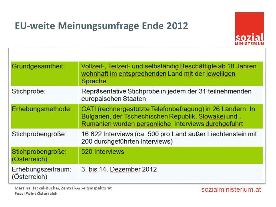 EU-weite Meinungsumfrage Ende 2012