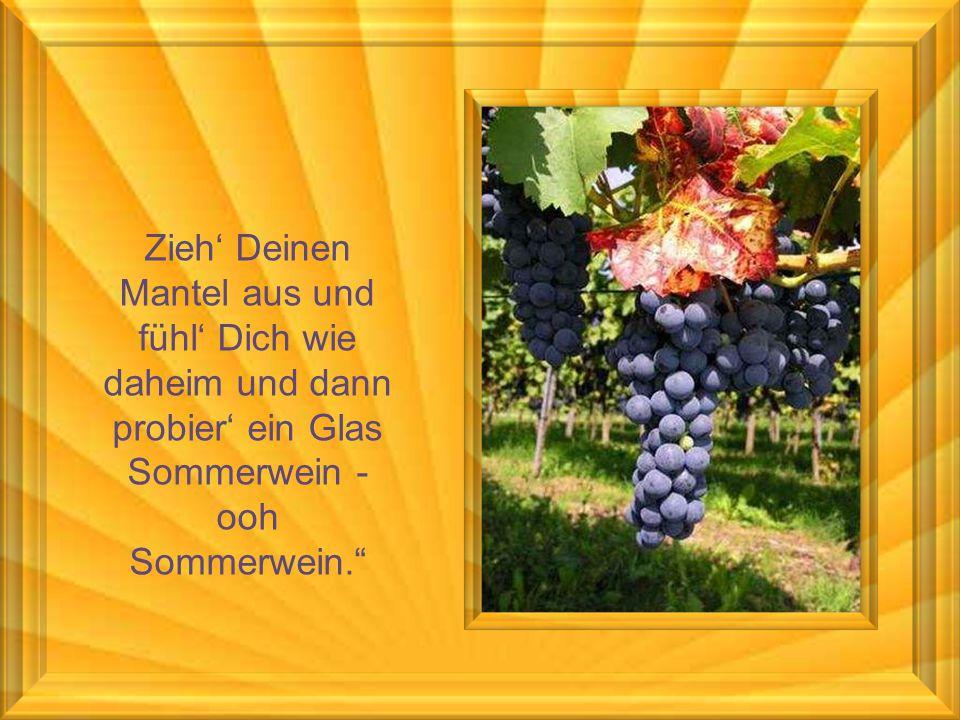Zieh' Deinen Mantel aus und fühl' Dich wie daheim und dann probier' ein Glas Sommerwein - ooh Sommerwein.