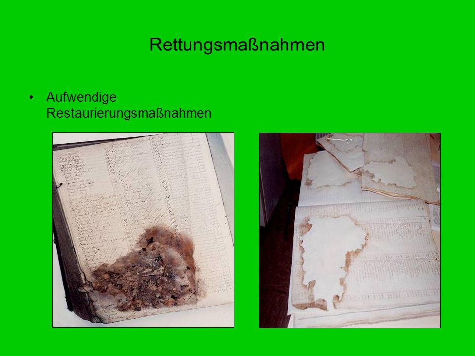 Rettungsmaßnahmen Aufwendige Restaurierungsmaßnahmen