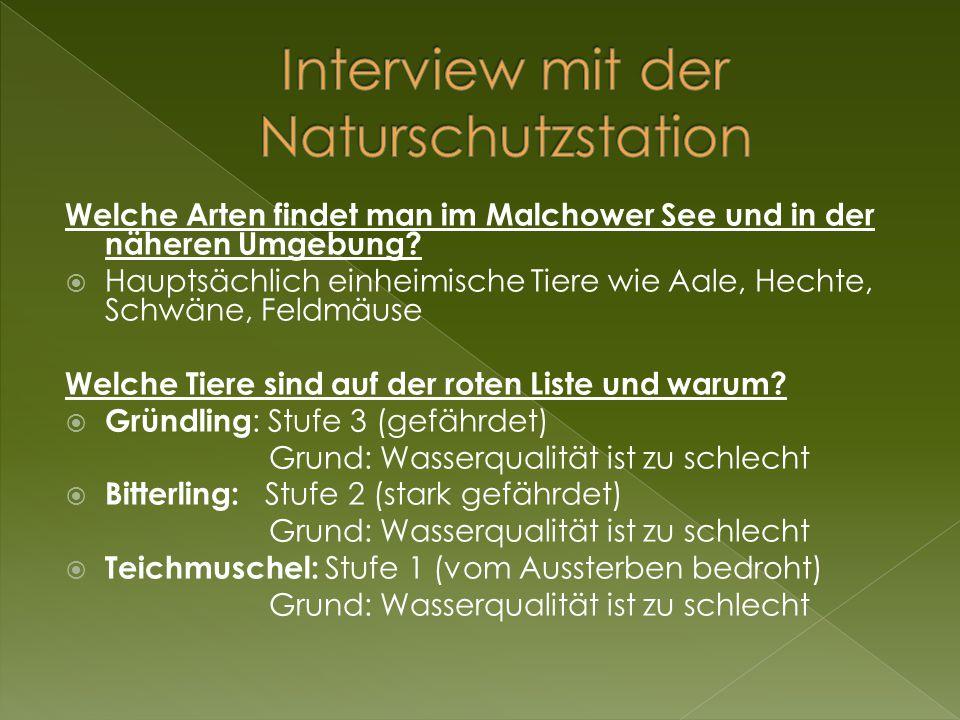 Interview mit der Naturschutzstation